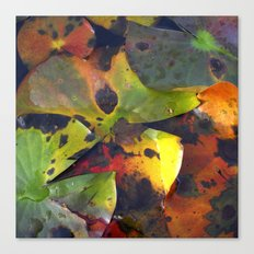 autumn lily pads IV Canvas Print