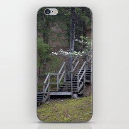 Dogwood Staircase iPhone Skin