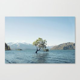 That tree in the middle of the lake Canvas Print