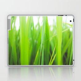 Summer is green Laptop & iPad Skin