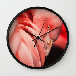 Shy Flamingo Wall Clock