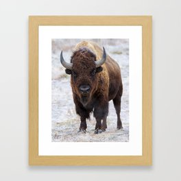 In The Presence Of Bison #society6 #decor #bison by Lena Owens @OLena Art Framed Art Print
