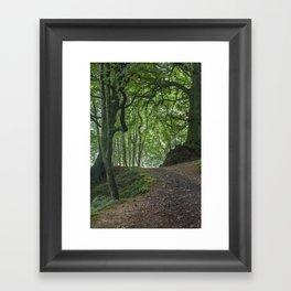 Into Blackbrough Woods Framed Art Print