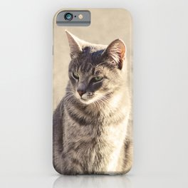 Pupols iPhone Case