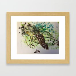 Hawksbill Sea Turtle Framed Art Print