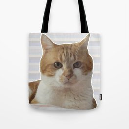 Red cat on a striped background. Tote Bag