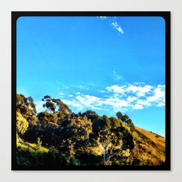 Trees and clouds in the sky. Canvas Print