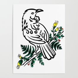 New Zealand Tui Bird Poster