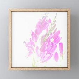 Delicate Framed Mini Art Print