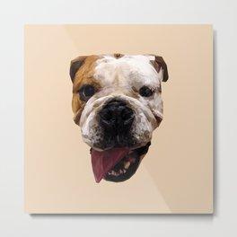 Bulldog low poly. Metal Print