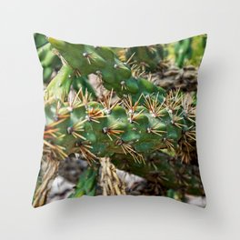 Take care Throw Pillow