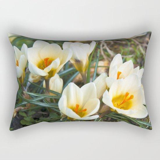 MEADOW of SPRING Rectangular Pillow