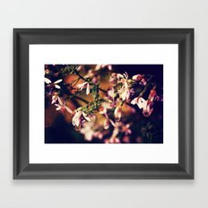 After the Rainstorm Framed Art Print