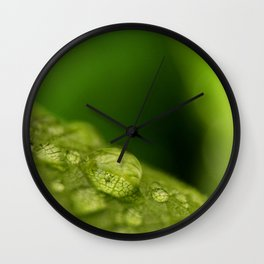 Green Leaf with Rain Drops Macro Photography Wall Clock