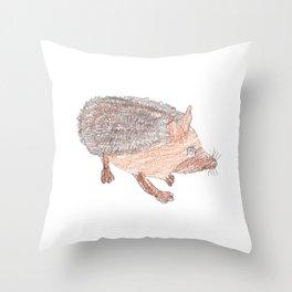Desert Hedgehog Throw Pillow