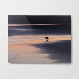 Morning Bird Metal Print