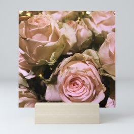 Shabby Chic Soft Peach-Pink Roses Mini Art Print