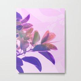Elegant Tropical Rubber Foliage 1 - Pink and purple Metal Print