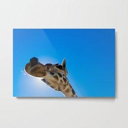 Giraffe close up face Metal Print