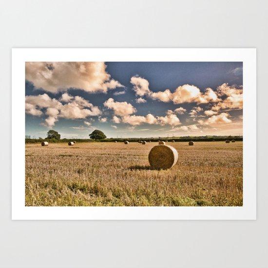 Hay Bales Art Print