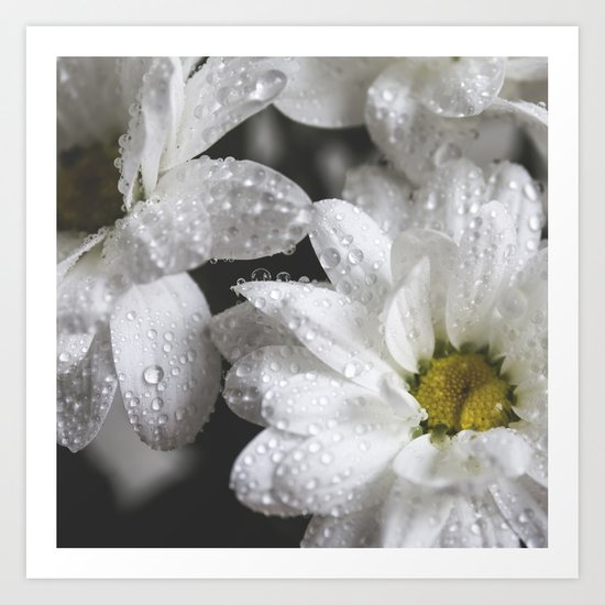 Daisies with drops Art Print
