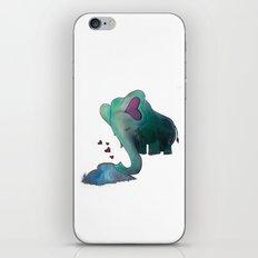 Big Love #2 iPhone & iPod Skin