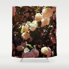 Pink Snowballs II Shower Curtain