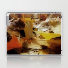 Crisp Autum Laptop & iPad Skin