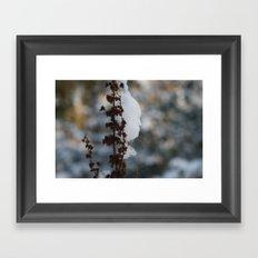 Snow attack Framed Art Print