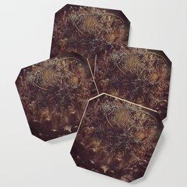 Dead Flower Coaster