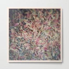 Mixed petals Metal Print