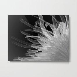B&W Organic1 Metal Print