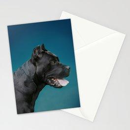 Cane Corso - Italian Mastiff Stationery Cards