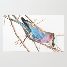 Lilac breasted roller Rug