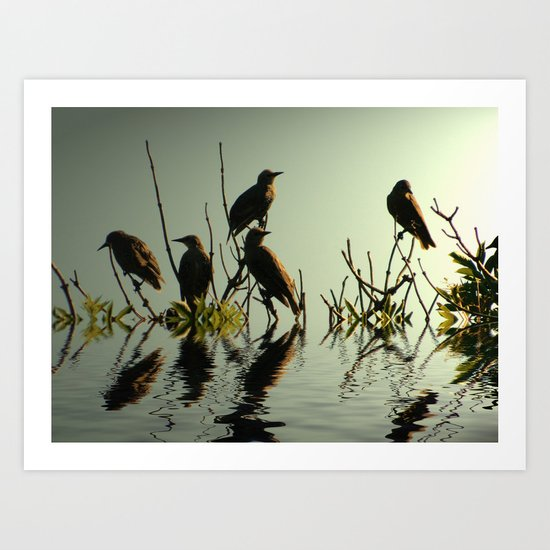 Starling Sunset Art Print