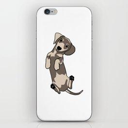 Happy dachshund illustration iPhone Skin