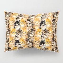 Kittywall Pillow Sham