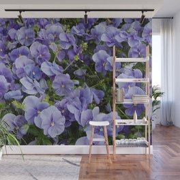 Pansy flower Wall Mural
