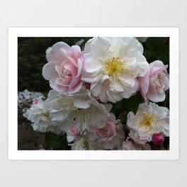 Flowers at Warwick Castle Art Print