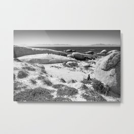 Penguin colony on Boulders Beach - Cape Town, South Africa Metal Print