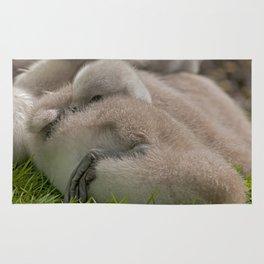 Sleepy Head Rug