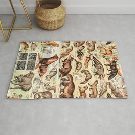 Cute Animals // Fourrures by Adolphe Millot XL 19th Century Science Textbook Diagram Artwork Rug