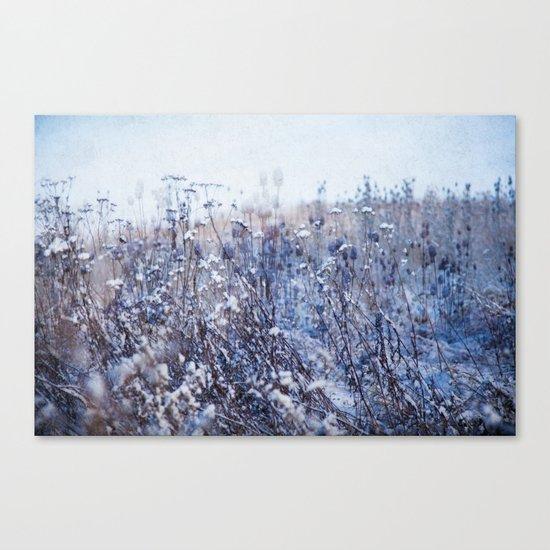 Winter Field 3 Canvas Print
