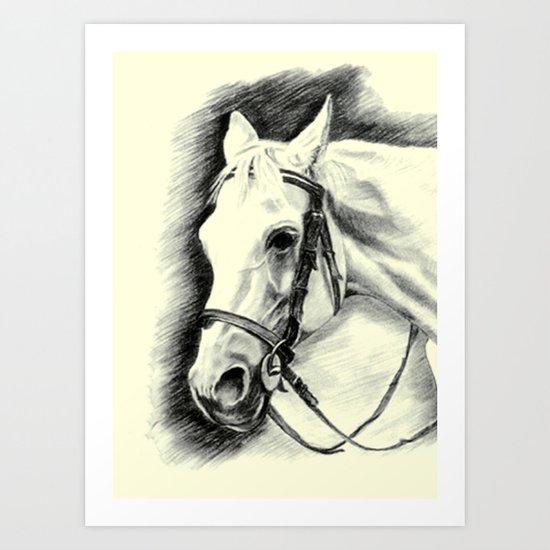 Horse-portrait Art Print