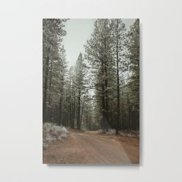Take the Road Less Traveled Metal Print