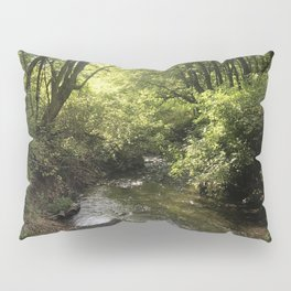 Canyon River 1 Pillow Sham