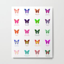 Butterflies 20 Metal Print