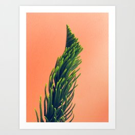 Complementary Colors Green Salmon Pink Against Background Art Print