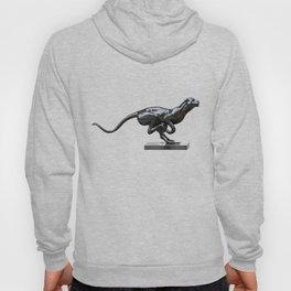 Black panther hematite Hoody
