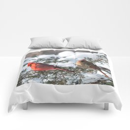 Sunny Winter Cardinals (square) Comforters